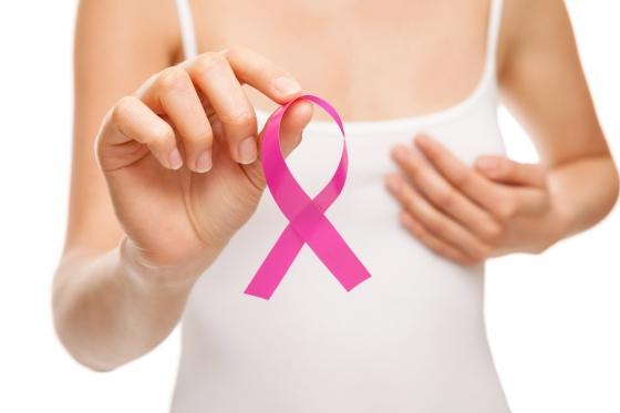 Conselho da Mulher e legionárias agendam exames de mamografia